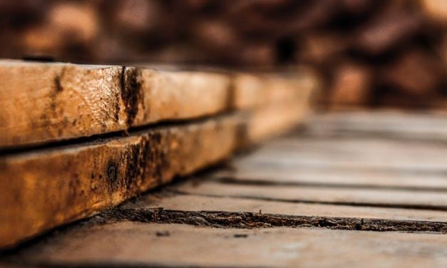 Jak zabezpieczyć drewnianą podłogę?